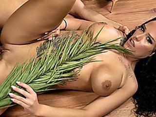 sort jungle fisseredtube håret buske
