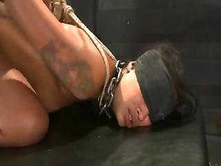 Skin Diamond And 1 More Nymph Have Tortured And Got Laid Inside The Basement