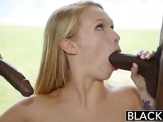 Bbc Foreplay Blowjob Compilation
