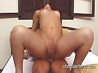 Brunette Shemale Gets Anal From A Stud