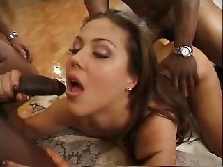 Gangbang Auditions 3 Scene 2