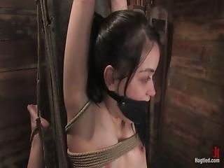 Esclavitud, Amordazado, Hogtied, Orgasmo, Atada
