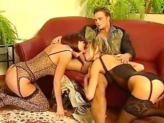 anal, sort, blond, blowjob, brunette, tissemand, orgie, pornostjerne, trekant, vintage