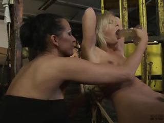 Busty Bitches In Bdsm Scenes