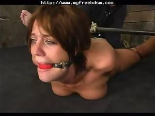 Pornstar Bondage Holly W Mrskyd Bdsm Bondage Slave Femdom Domination